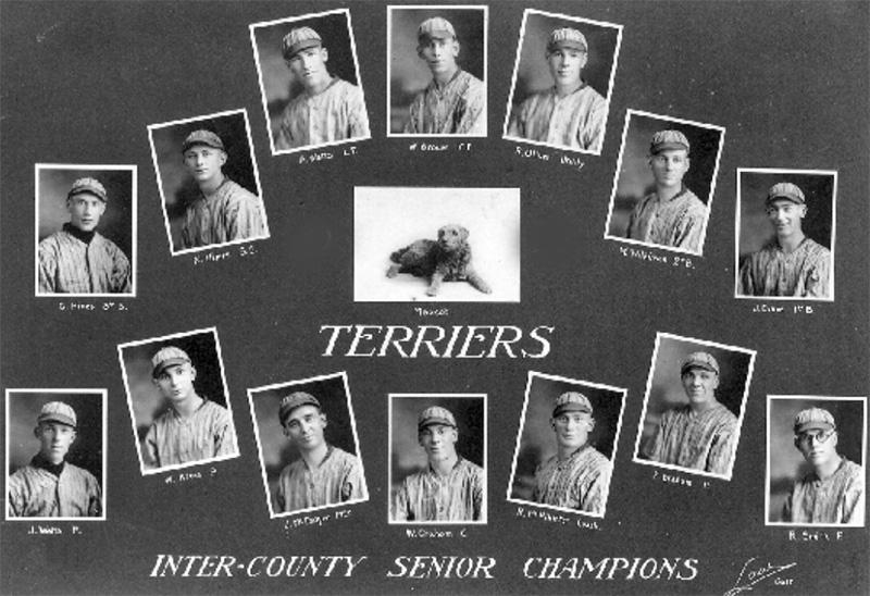galtterriers1923
